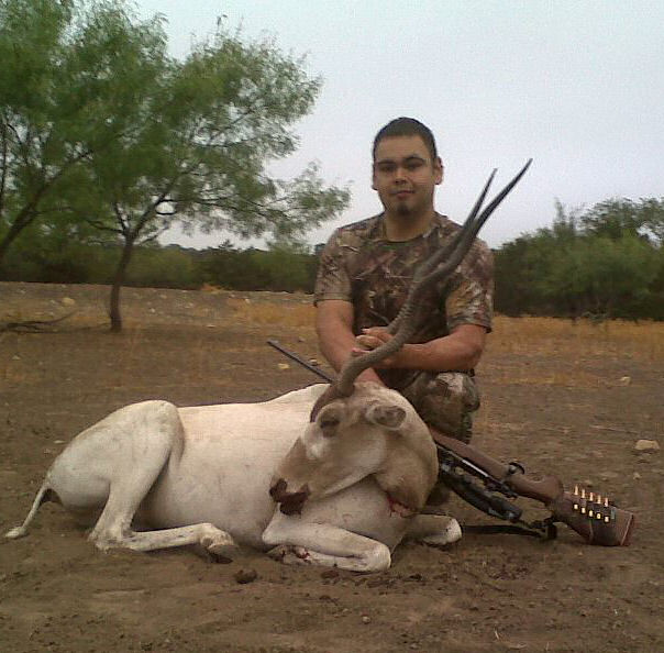 Db hunting ranch texas hill country hog and exotic hunting for Db ranch